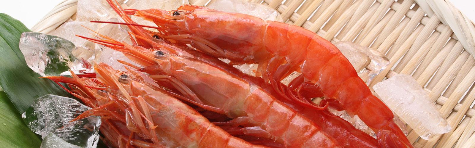 Gambón - Tradición Pesquera