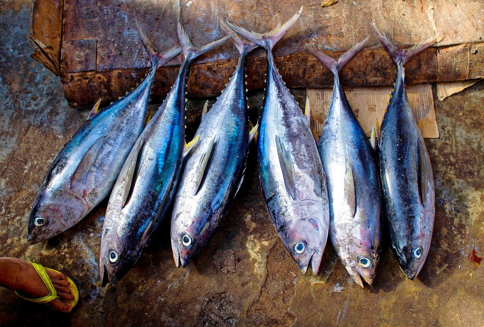 ventajas de consumir pescado azul
