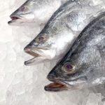 Cómo descongelar pescado