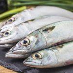 Qué pescados contienen mayor omega 3