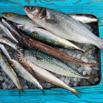 cuanto dura el pescado en el hielo